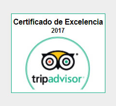 Alpasion-winner-excellence-trip-advisor-award