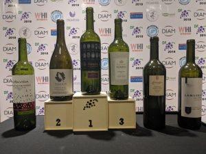 Alpasion_first_place_winner
